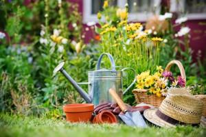 giardinaggio_giardino