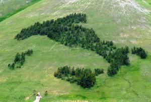 italia_verde_ambiente_foresta