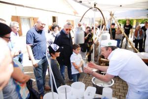 Bambini imparano a fare il formaggio al Caseificio Tomasoni
