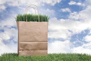 shopping spesa sostenibile sostenibilità green