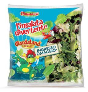 DDS insalata-divertente-2017