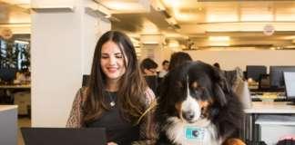 Una dipendente con il proprio pet presso gli uffici pet friendly di Mars Italia