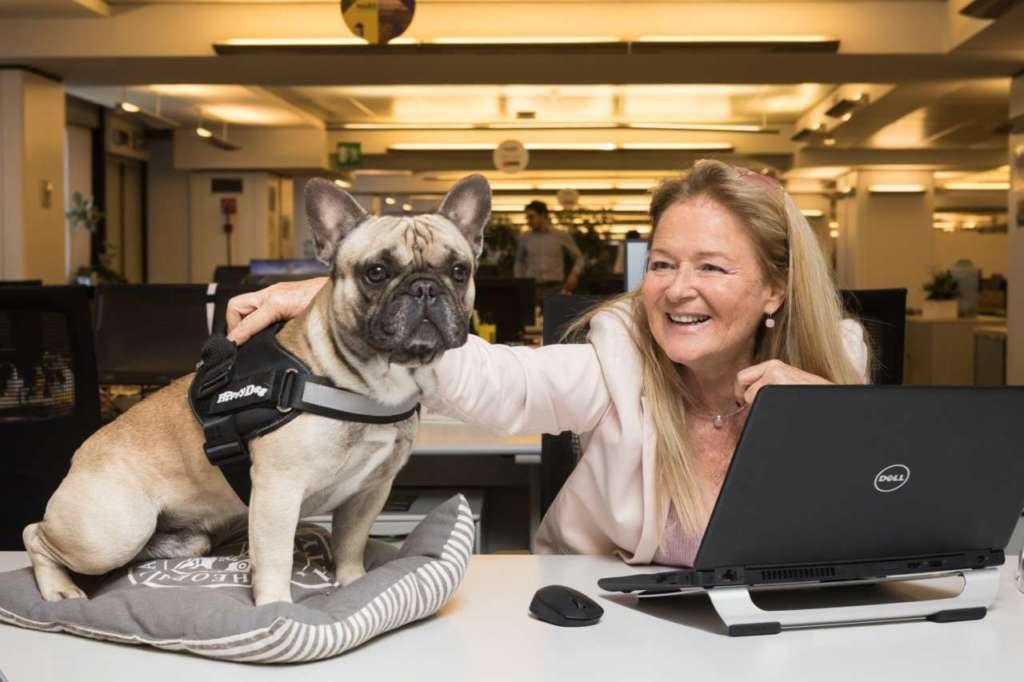 Uno degli ospiti dell'ufficio pet friendly di Mars Italia