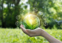 Green Retail Forum, compie dieci anni l'evento ideato da PLEF (Planet Life Economy Foundation) e NDB Il Marketing Consapevole